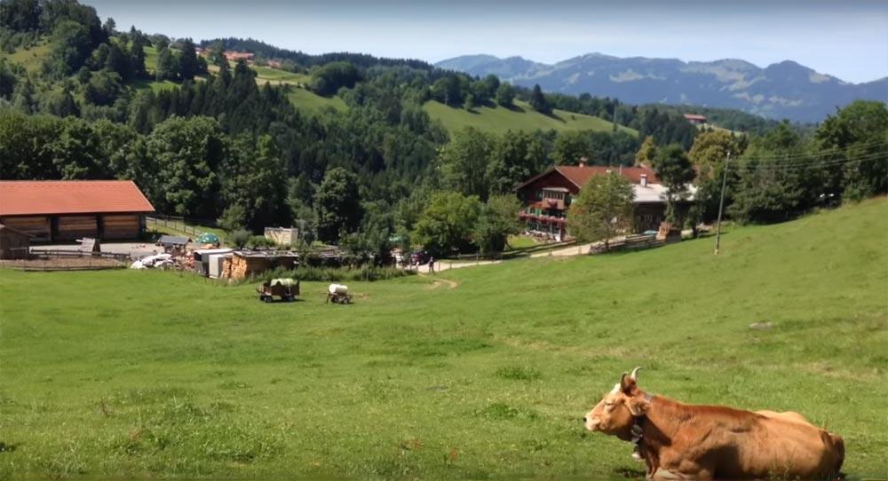 Erlebnisbauernhof und Käserei Krötz in Sonthofen-Tiefenbach